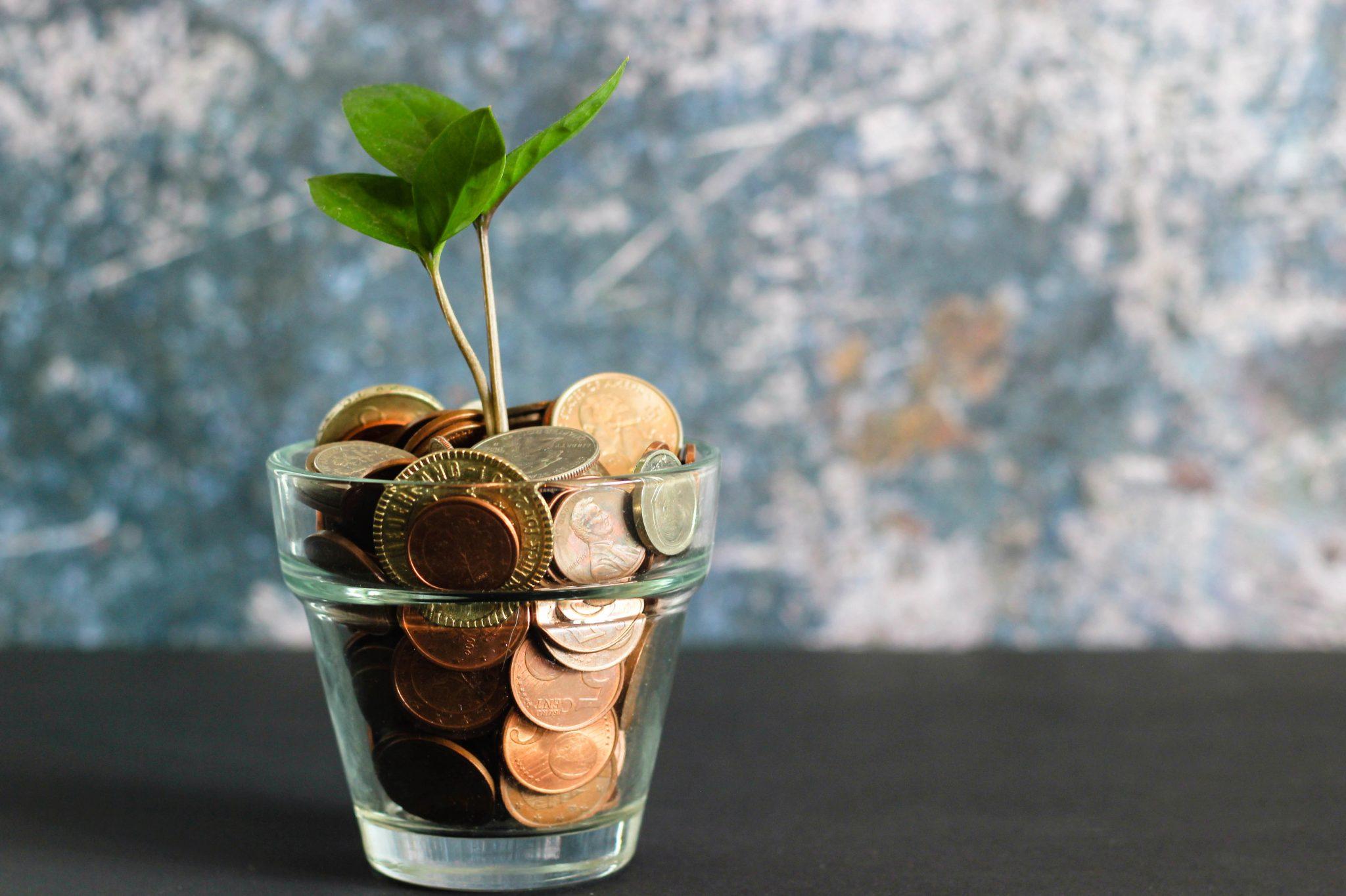 Plantje dat groeit op munten